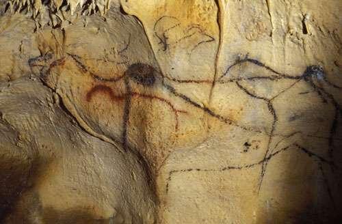Fig. 10. Cerf mégacéros et bouquetin dans la Grotte de Cougnac (Lot). © Cliché J. Clottes. Tous droits réservés