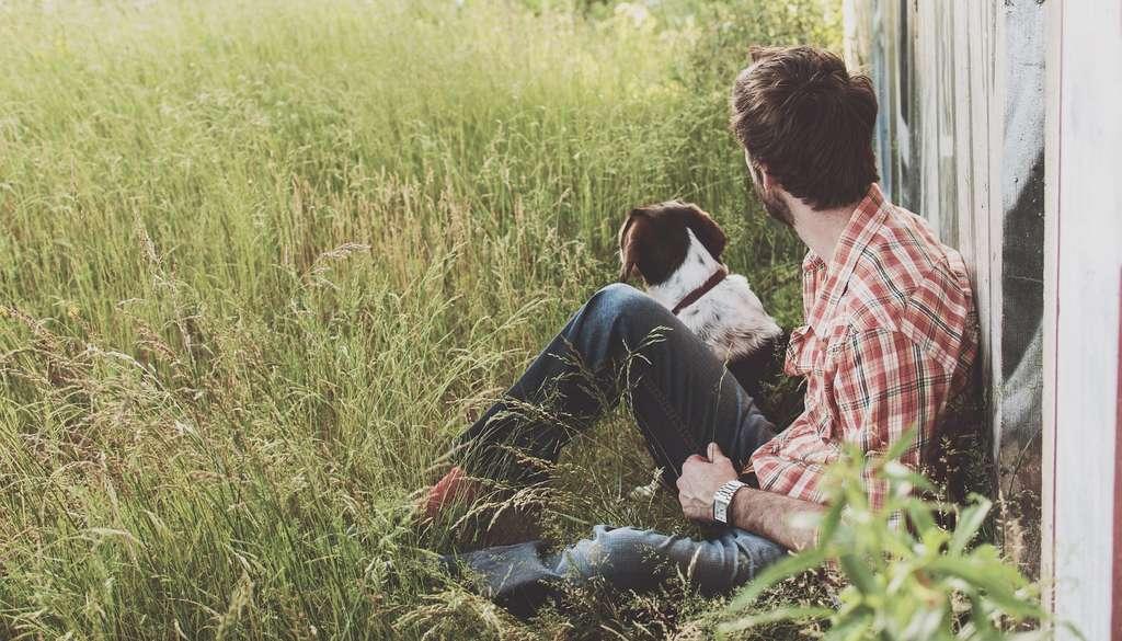 Plusieurs études suggèrent que la génétique a, d'une part, encouragé le chien à se rapprocher de l'Homme et d'autre part, poussé homo sapiens à vivre avec le chien. Pour en apprendre plus, notre actualité qui explique comment « notre amour pour les chiens pourrait être inscrit dans nos gènes ». © Free-Photos, Pixabay License