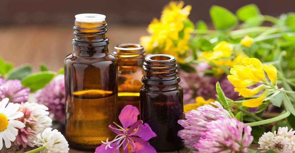 Qu'est-ce que la solution intérieure ? Ici, ambiance zen, fleurs et huiles essentielles. © Olga Miltsova, Shutterstock