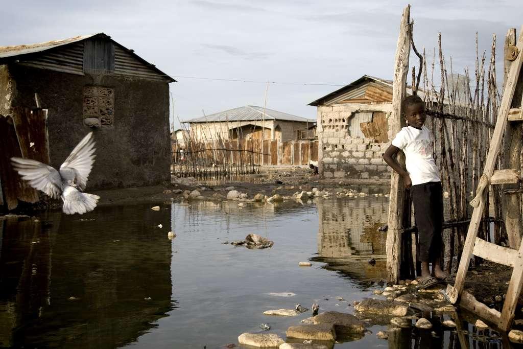 En novembre 2010, Haïti est victime d'un ouragan, appelé Tomas alors que les villes ne sont pas toutes reconstruites après le séisme de janvier. S'il ne s'est pas montré aussi meurtrier qu'on aurait pu le craindre, il a facilité la propagation du choléra. Cette photo, prise dans la ville de Raboto en novembre 2010, montre l'inondation consécutive à la tempête. Or, cette eau stagnante est propice à l'infection par le Vibrio cholerae, bactérie à l'origine de la maladie. © United Nations Photo, Fotopédia, cc by nc nd 2.0