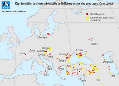 Représentation des foyers d'épizootie de l'Influenza aviaire des sous types H5 en Europe. © LPO - tous droits de reproduction interdit