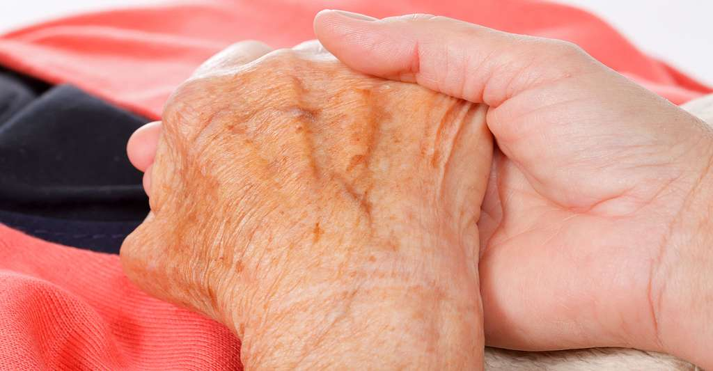 Quelles est l'évolution de la maladie de Parkinson ? © Ocskay Mark - Shutterstock