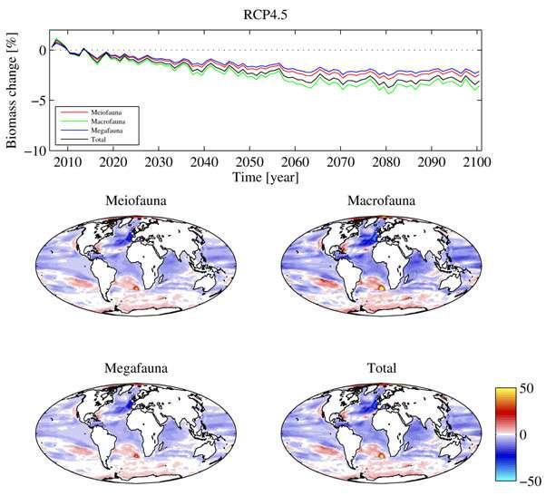 Ces illustrations montrent les variations de la biomasse benthique de 2006 à 2015 et de 2091 à 2100 pour le scénario climatique modéré (RCP 4.5). En haut, les changements prévus dans la biomasse pour différentes tailles de la faune benthique dans la série temporelle modélisée. Les planisphères montrent des variations, en pourcentage, de la biomasse benthique sur fond marin (mg.C.m-2). © Daniel Jones et al., Global Change Biology, 2013