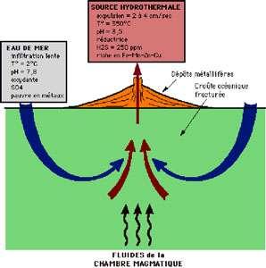 Ce croquis illustre l'hydrothermalisme. © DR