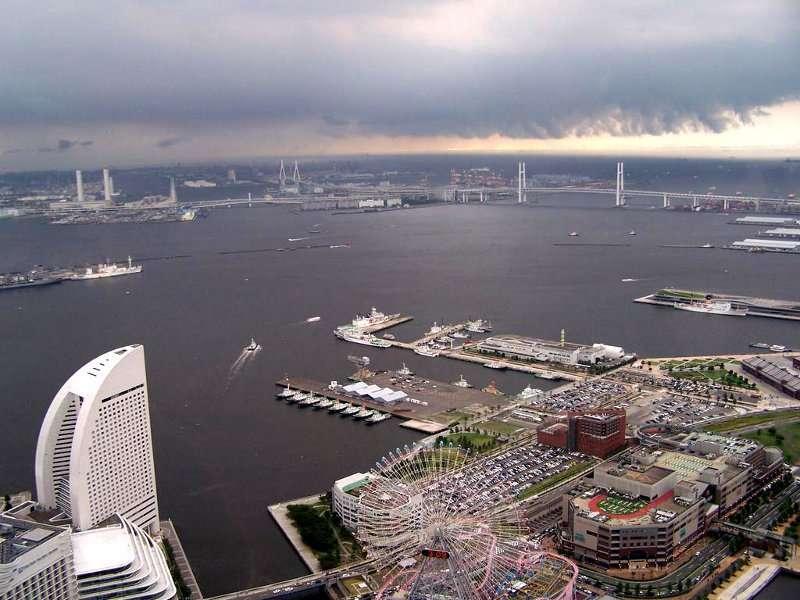 Les poissons pêchés dans les ports japonais sont-ils toujours consommables ? © DR