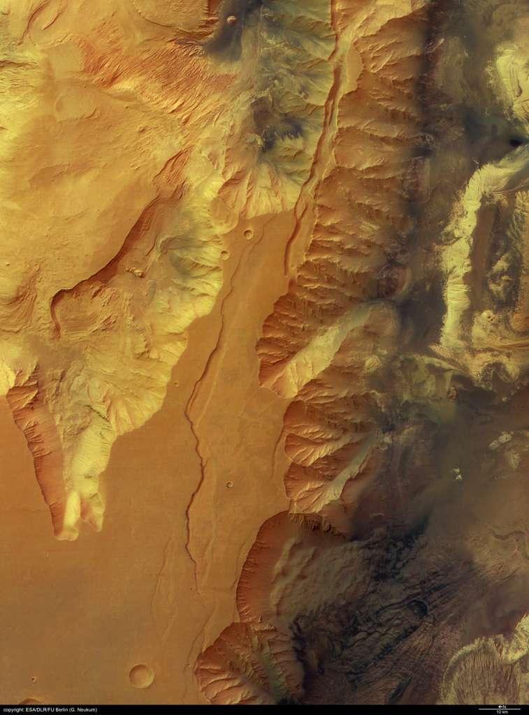 Condor Chasma pris par la caméra HRSC