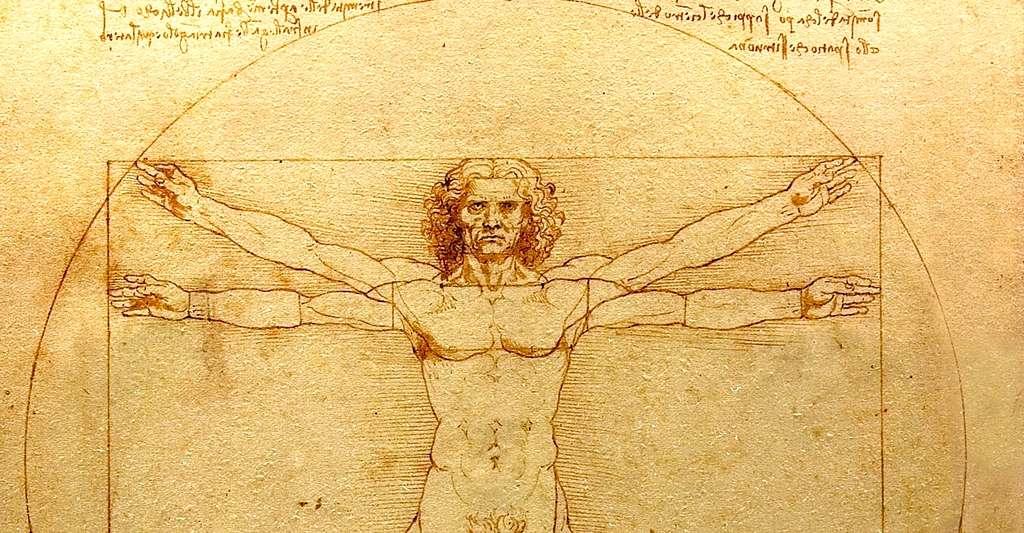 L'homme de Vitruve, par Léonard de Vinci. Les symétries se retrouvent dans de nombreuses disciplines scientifiques, mais aussi en philosophie. © Luc Viatour, Wikimedia commons, DP