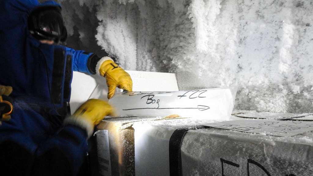 Les analyses de la glace antarctique ancienne (échantillons dans un sac dans une chambre froide) suggèrent que des impulsions soudaines de dioxyde de carbone entrant dans l'atmosphère ont affecté le climat de la Terre pendant toutes les phases de la période glaciaire récente. © Lucie Maignan, Institut polaire français