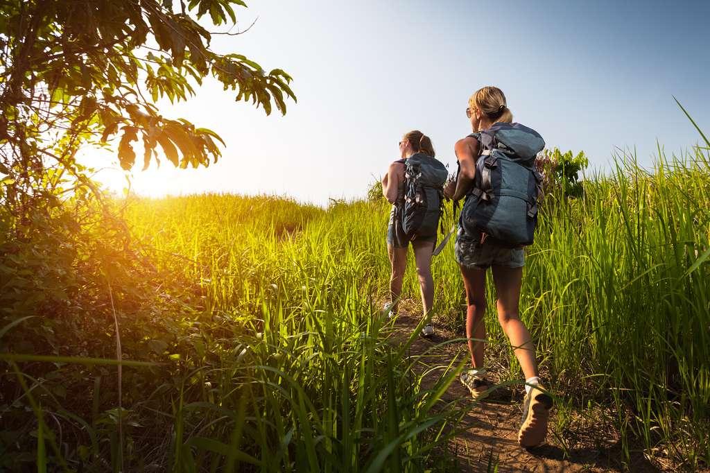 Le chemin de Compostelle est sans doute l'un des plus anciens circuits de randonnée pédestre d'Europe. © Dudarev Mikhail, fotolia
