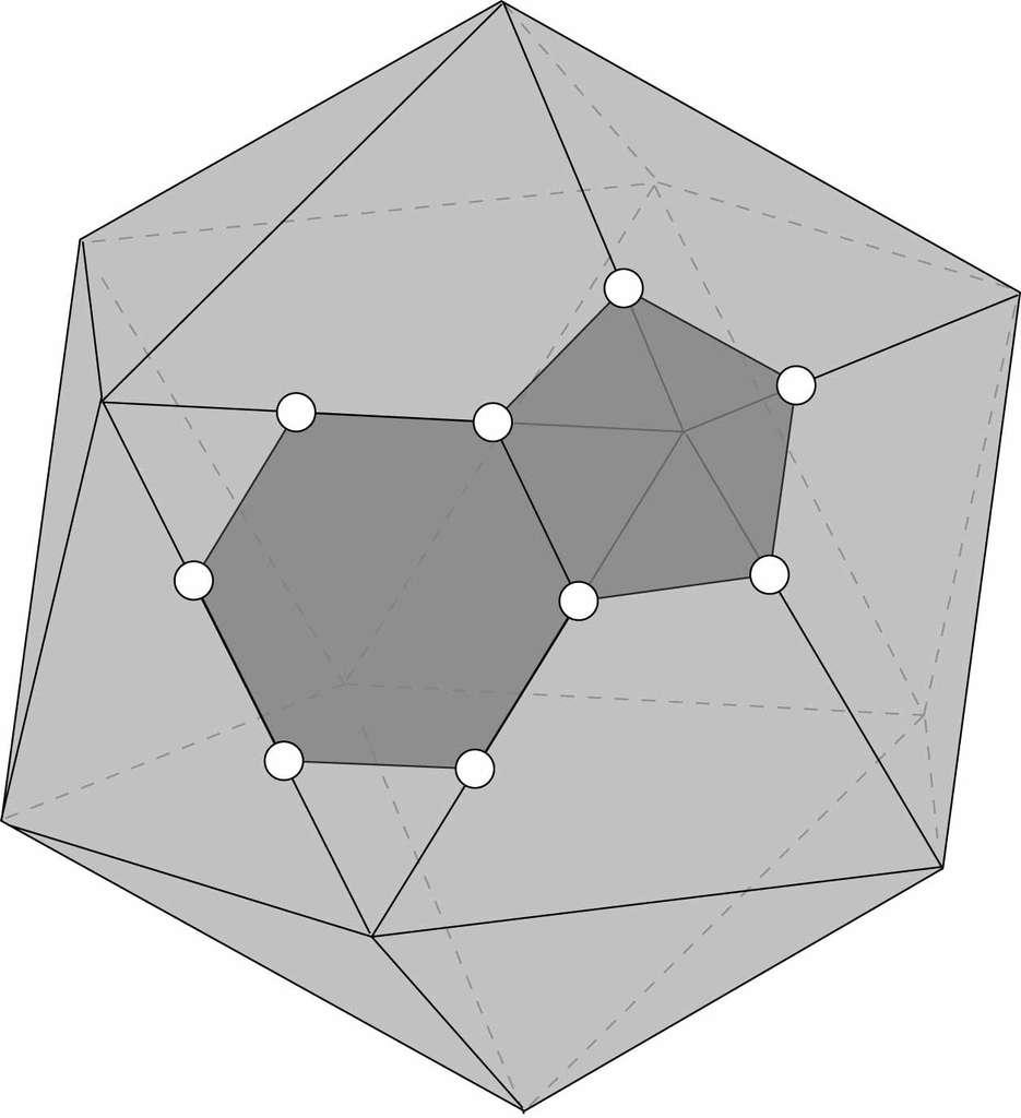 En route vers l'icosaèdre tronqué. On voit sur cette figure que chaque pointe engendre un pentagone et chaque triangle, un hexagone. © Hervé Lehning, DR