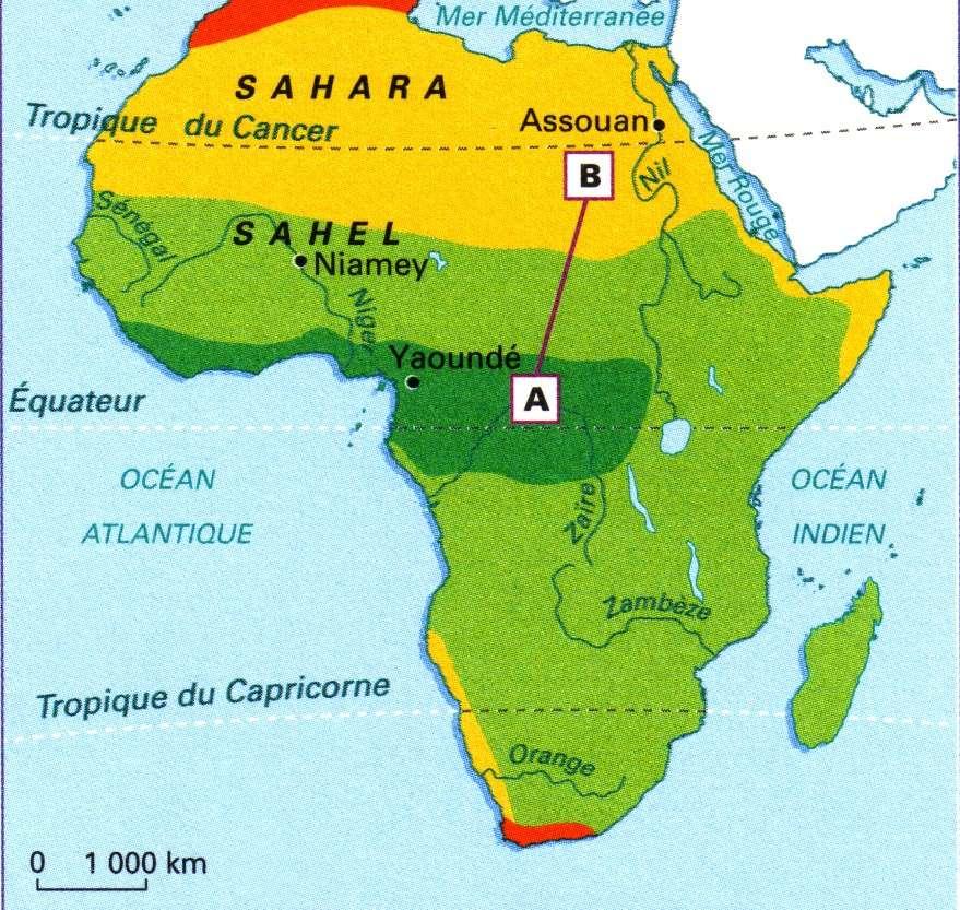 Le Sahel est la zone délimitant le passage du Sahara aux savanes africaines. © SotaLCB2416, Adobe Stock