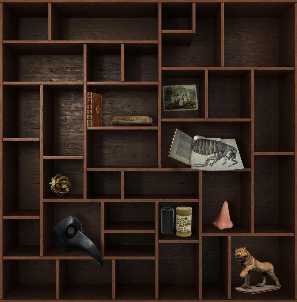Et de huit ! Rendez-vous dans deux semaines pour un nouveau chapitre du Cabinet de curiosités. © nosorogua, Adobe Stock, Futura