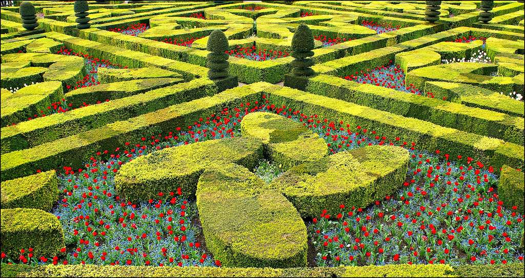 Les jardins du château de Villandry et la Renaissance
