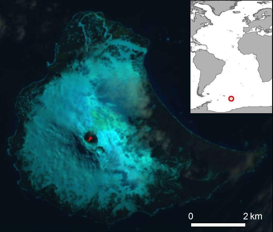 Un lac de lave repose à l'intérieur du cratère du mont Michael sur l'île Saunders, située à l'extrême sud de l'Atlantique, juste à l'extérieur de l'océan glacial antarctique, sur cette image en fausses couleurs prise par le satellite Landsat 8 (Nasa/USGS) le 31 janvier 2018. © Landsat/British Antarctic Survey/D.M.Gray et al.
