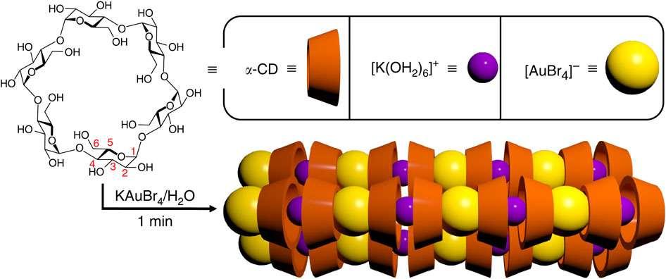 Représentation schématique de la structure des nanofilaments en forme d'aiguille, obtenus par la nouvelle méthode des chercheurs. Un filament est formé par une succession de complexes de potassium [K(OH2)6]+ et de complexes d'or [AuBr4]-, entrecoupée d'alpha-cydextrines (alpha-CD). Cette dernière molécule est issue d'un dérivé d'amidon, et permet d'isoler l'or. © Liu et al., Nature Communications