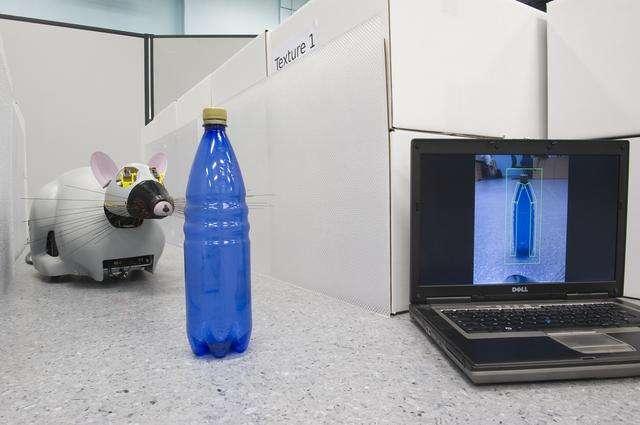 Système de vision du robot : détection bio-inspirée de mouvements, de couleurs et de contours. © Steve N'Guyen et al., 2008/CNRS Photothèque/ISIR/Rajau Benoît