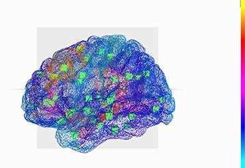 Le Cerveau Virtuel : reconstruction des régions du cerveau et des connexions qui les relient. Les cubes verts indiquent le centre des régions du cerveau qui sont connectées. © INS UMR1106 Inserm, AMU