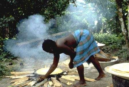 Cuisson du manioc ; kassaba sur une plaque. Village de Banafokondre, pays Saramaka, Suriname. © IRD, Michel Sauvain, tous droits de reproduction interdit