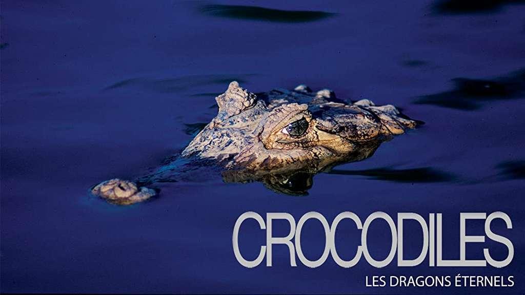 Crocodiles, les dragons éternels © Amazon