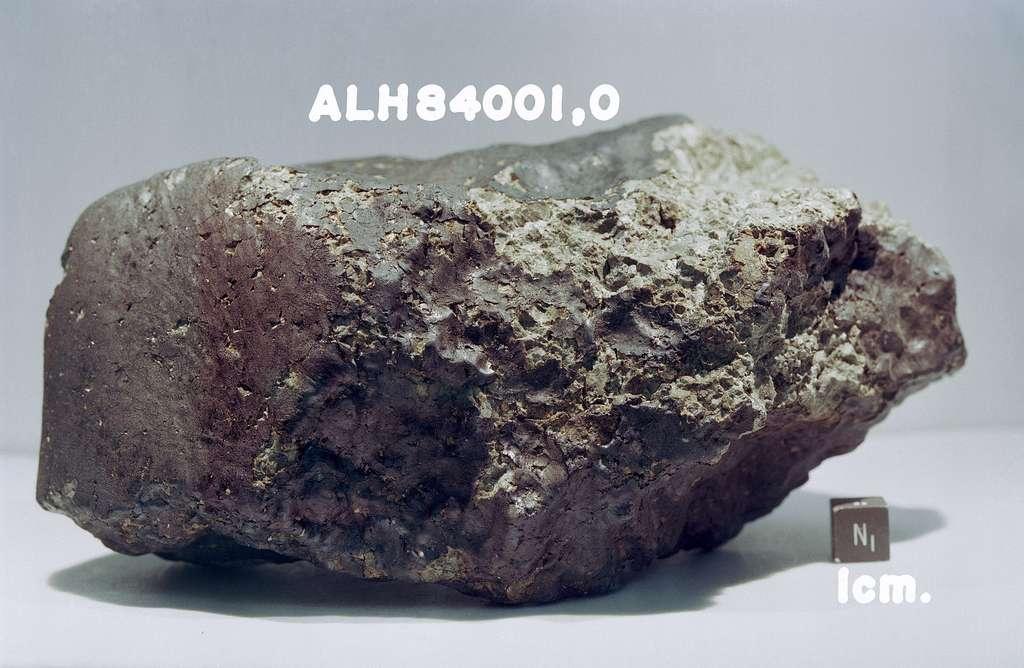 La fameuse météorite martienne ALH84001. © Nasa