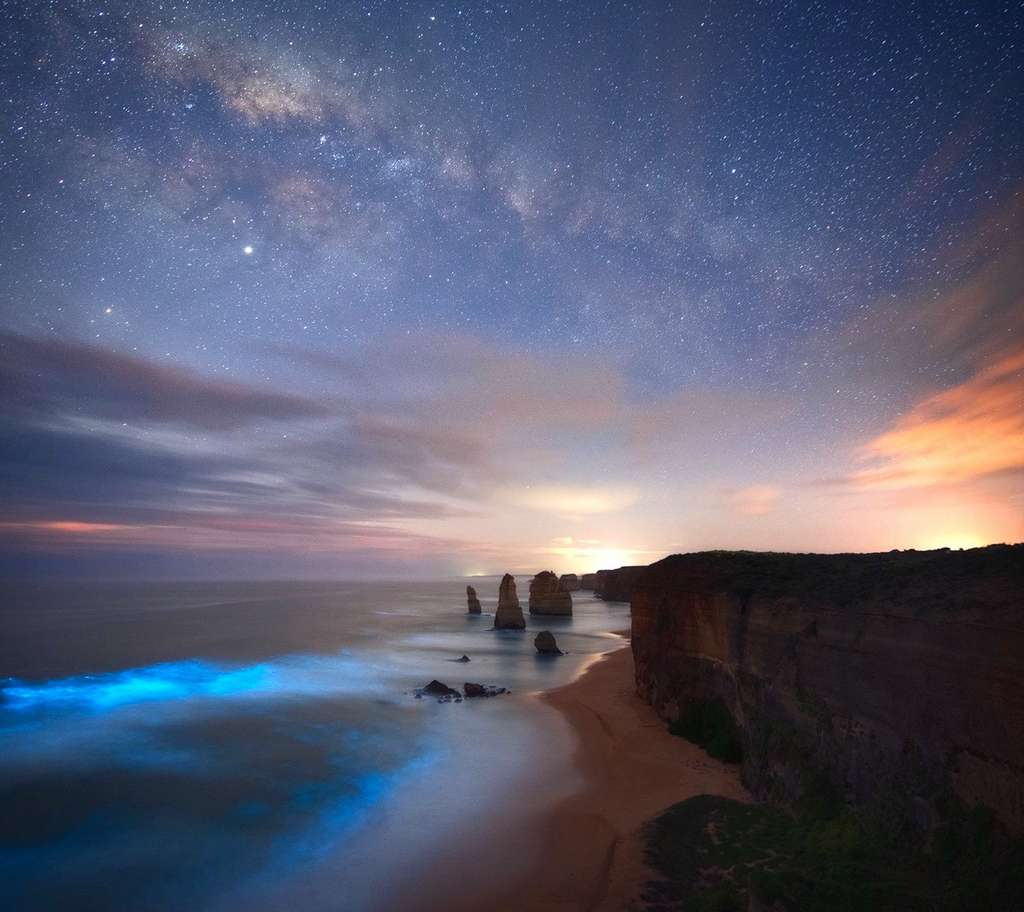 « Bioluminescence ». © Josh Beames
