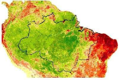Sur cette image d'Amérique du sud, où la forêt amazonienne est délimitée par des lignes noires, La végétation en pleine croissance apparaît en vert ; En rouge figurent les zones où les plantes brunissent et ralentissent leur activité (Crédits : Terrestrial Biophysics and Remote Sensing Lab, University of Arizona)