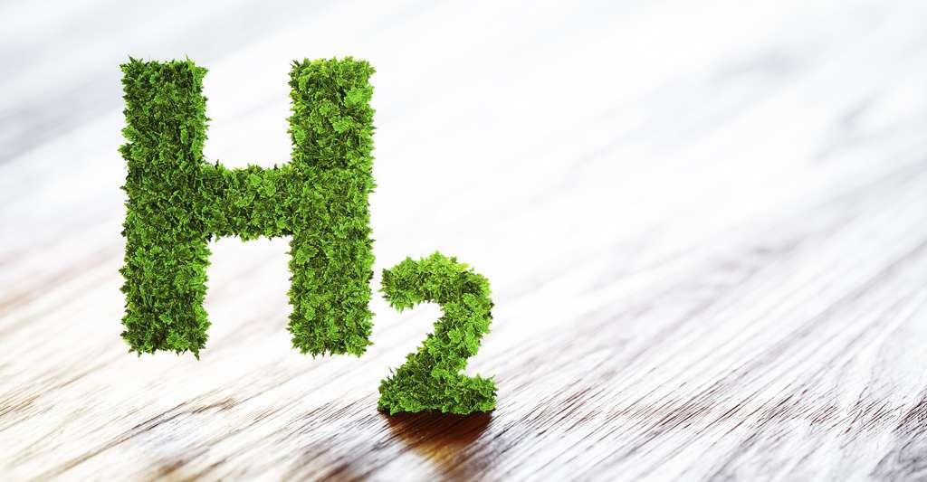 Aujourd'hui, produire de l'hydrogène « vert » coûte deux à trois fois plus cher que produire de l'hydrogène « gris », fortement émetteur de CO2. © malp, Adobe Stock