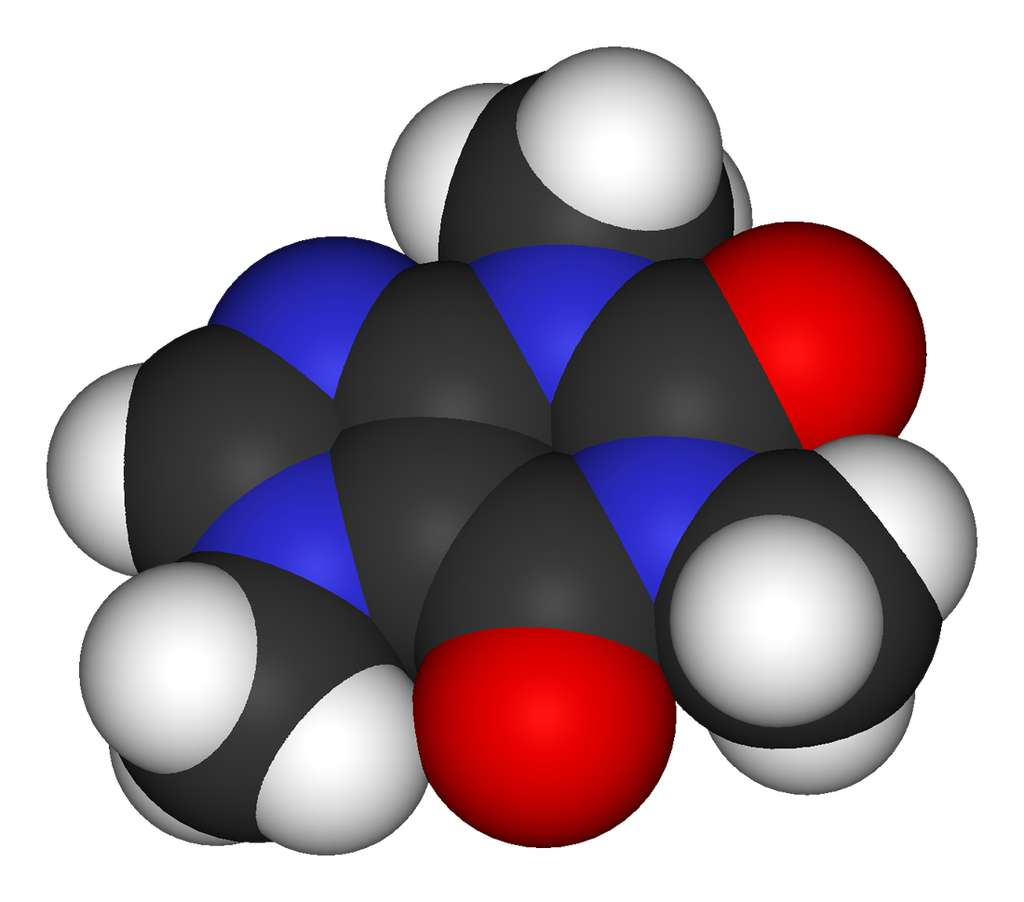 Découverte en 1819 par le chimiste allemand Friedrich Ferdinand Rungen, la caféine est un alcaloïde présent, entre autre, dans le café. C'est un stimulant des systèmes nerveux central et cardiovasculaire. Cette nouvelle étude montre que la caféine permet aussi d'améliorer la mémoire chez l'Homme. © Benjah-bmm27, Wikimedia Commons, DP