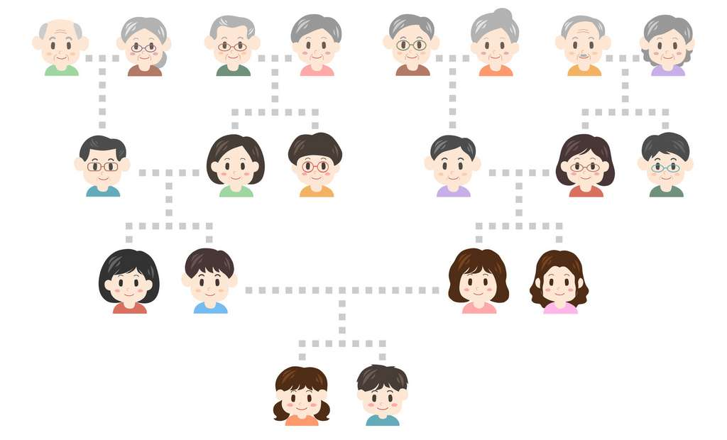 Se marier entre parents proches augmente la probabilité d'hériter de deux gènes récessifs, porteurs de maladie génétique. © osame, Fotolia