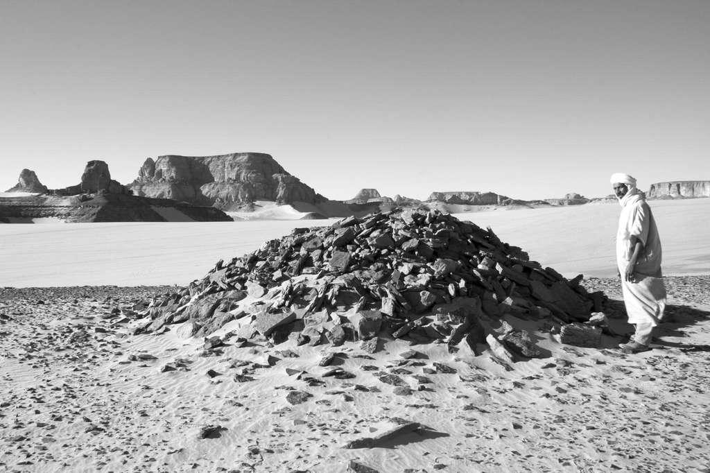 La vue d'un des tumulus, sous lesquels les hommes et les juvéniles ont été découverts. © M. A. Tafuri