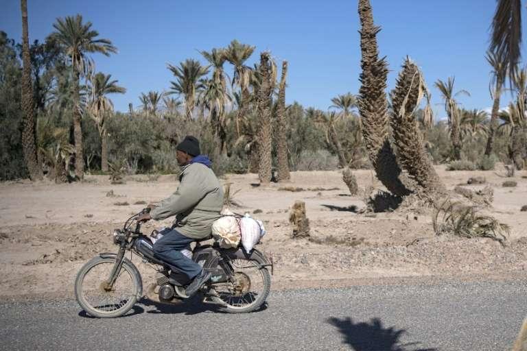 Paysage de désolation dans l'oasis de Skoura, dans le sud-est du Maroc. © Fadel Senna, AFP