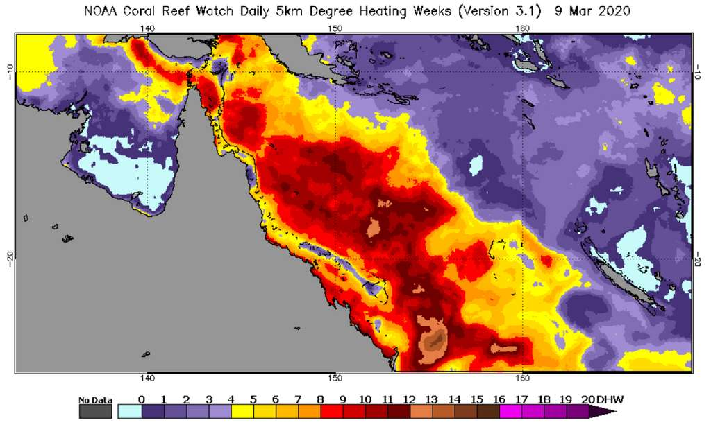 Le Degree Heating Week (DHW) montre le niveau de stress thermique accumulé au cours des 12 dernières semaines. Au-dessus de trois, il indique un blanchiment significatif. © NOAA Coral Reef Watch