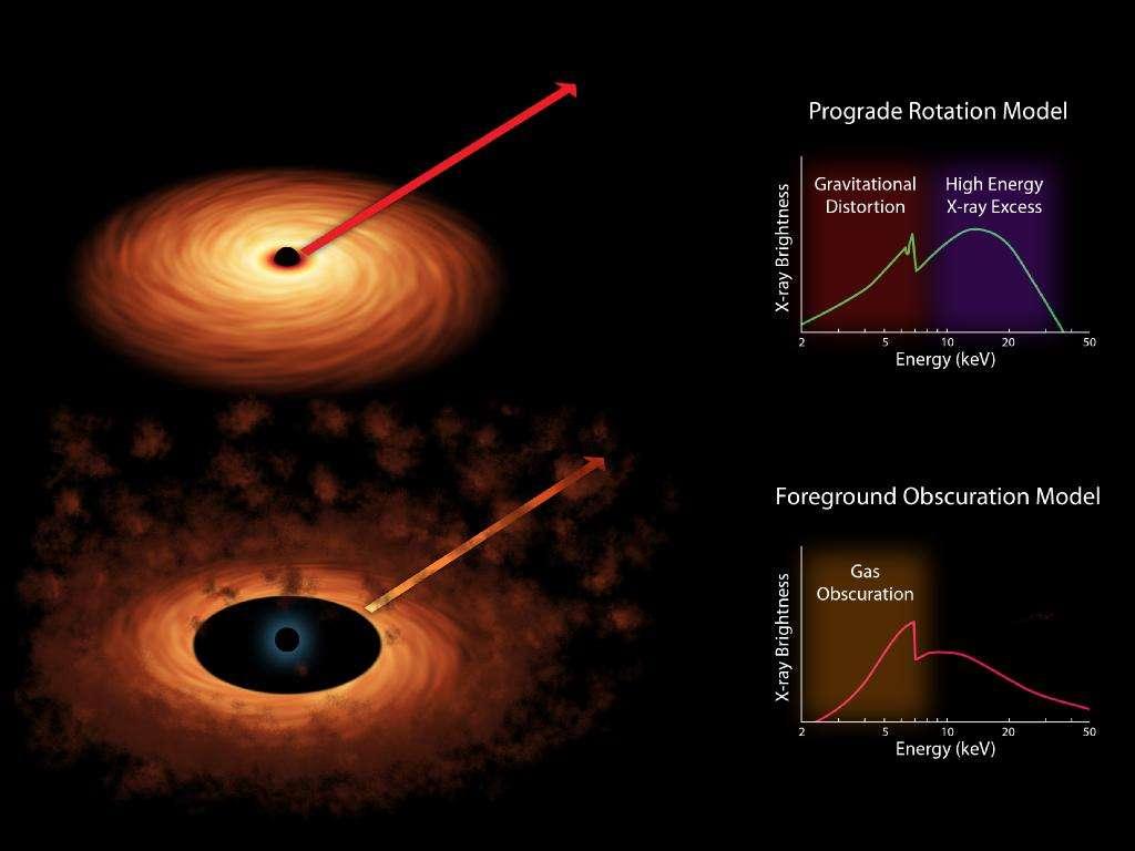 Sur ces deux schémas, on a illustré le fait que le spectre en rayons X des émissions des atomes de fer dans le disque d'accrétion autour d'un trou noir était différent selon que l'on considère qu'il est déformé principalement par des effets relativistes (en haut) ou par l'absorption de la matière présente dans le disque. On sait maintenant que la première hypothèse était la bonne. © Nasa