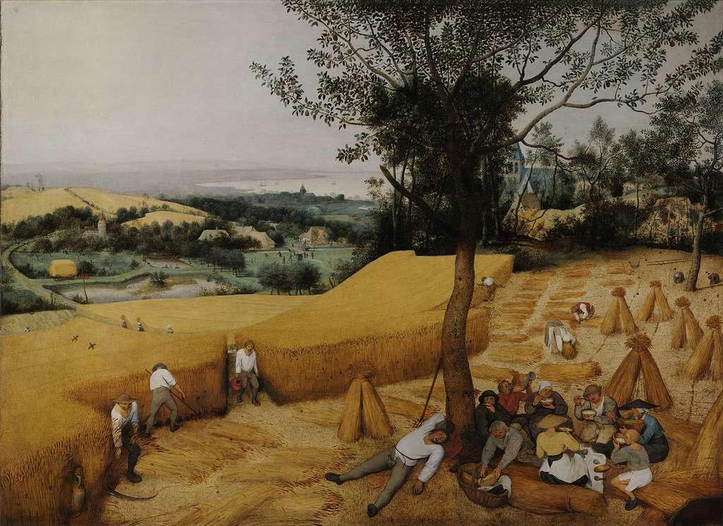 Les moissonneurs ou La moisson par Pieter Brueghel l'Ancien, en 1565. Metropolitan Museum of Art, New York. © Wikimedia Commons, domaine public
