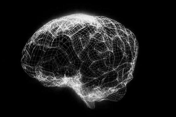 Une capture d'écran de la vidéo de présentation du Human Brain Project. Une simulation du cerveau humain devrait être possible à l'horizon 2023. © Human Brain Project