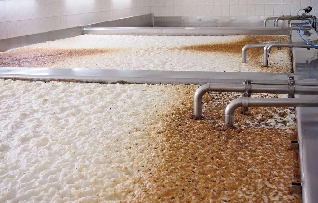 En raccourcissant la période de fermentation, on limite la transformation des sucres en alcool. © Hamik, Adobe Stock