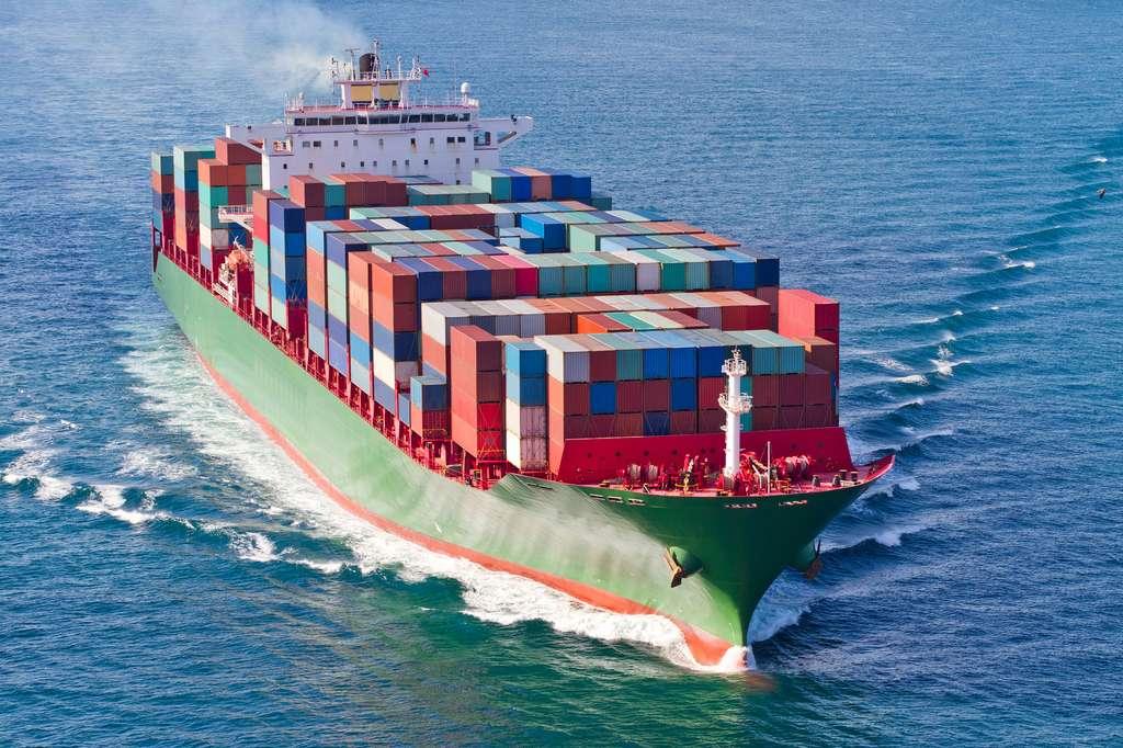 Le transport maritime et la pêche industrielle se sont considérablement développés ces dernières années. © EvrenKalinbacak, Fotolia