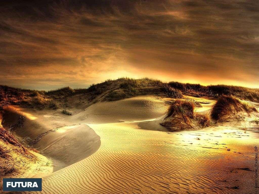 Coucher de soleil sur les dunes au Danemark