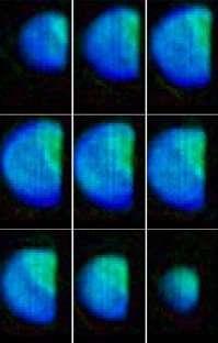 Transformée de Fourier du motif de diffraction de cristaux de plomb (Crédits : Ian Robinso X-ray Studies Group)