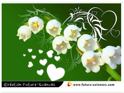 Cartes 1er Mai Du Muguet Pour Envoyer Un Brin De Bonheur