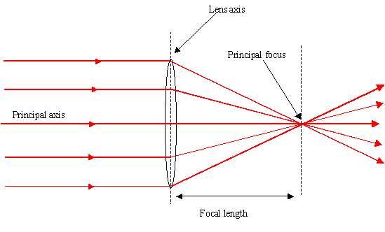 On peut considérer l'horizon un peu comme le bord d'une lentille convergente. © Antonine Education Website
