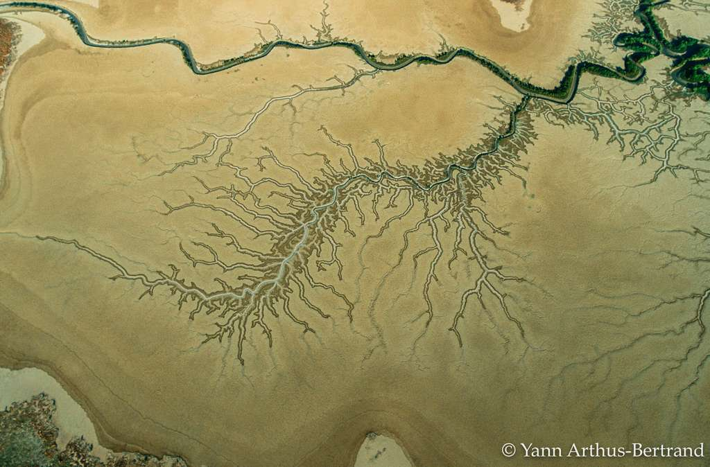 Un fleuve du parc national de Kakadu