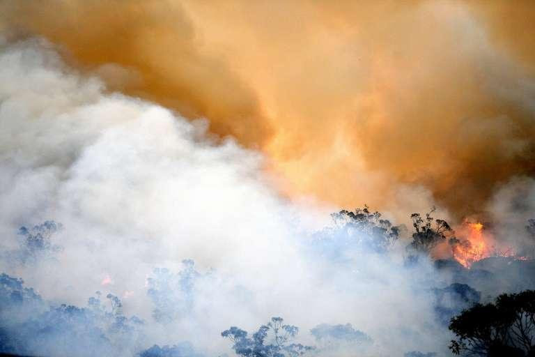 Un incendie volontairement déclenché par les pompiers pour en contenir un autre dans la région de Spencer (Australie) le 9 décembre 2019. © Saeed Khan, AFP