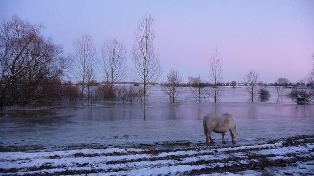 Les inondations sont toujours impressionnantes. Ici, la crue du Doubs en décembre 2010. © Dead.archer, Flickr, cc by nc nd 2.0