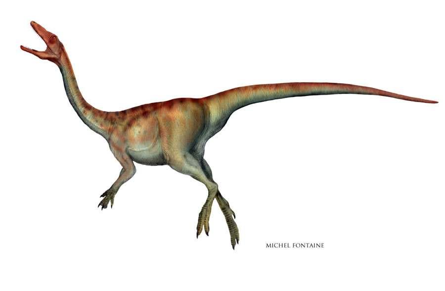 Procompsognatus