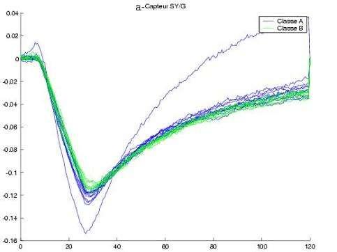 Autolyse des protéines musculaires selon la perte de fraîcheur (Crédits : université de la Rochelle)