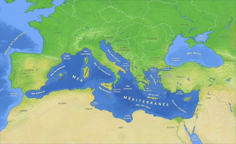 L'étude révèle une répartition hétérogène des différentes populations de grands dauphins au sein de la Méditerranée. © OH237, Wikimedia Commons, CC by-sa 4.0