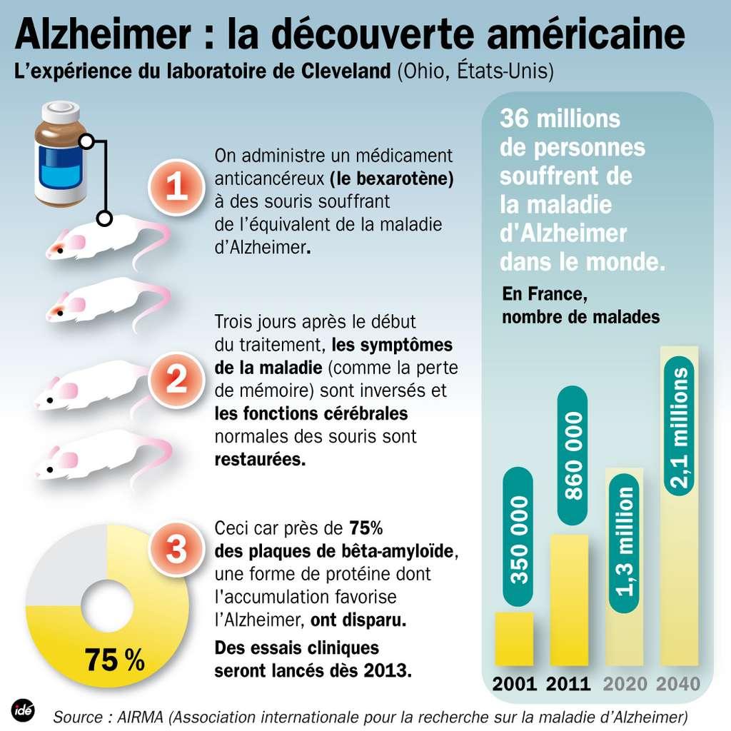 Cette illustration reprend les grands points de l'expérience. À la fin du traitement, près de 75 % des plaques séniles ont disparu. Une avancée qui pourrait être fondamentale lorsqu'on regarde les prédictions du nombre de patients de la maladie d'Alzheimer dans les années à venir. Si 860.000 Français sont touchés, on dépasserait les 2 millions en 2040. Il faut donc trouver un remède au plus vite. © Idé