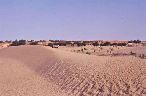 Erg du Trarza en Mauritanie à l'Est de Nouakchott (décembre 2001). Ici au premier plan, amorce de sif barrant le couloir interdunaire entre deux cordons longitudinaux.