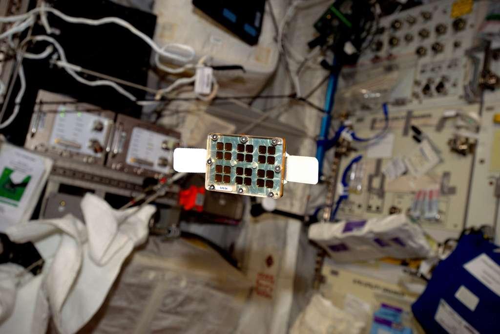 Les quatre porte-échantillons de l'expérience Matiss. Installés dans différents endroits du laboratoire Columbus par Thomas Pesquet, ils ont ensuite été redescendus sur Terre où ils ont été analysés. © Esa, Nasa